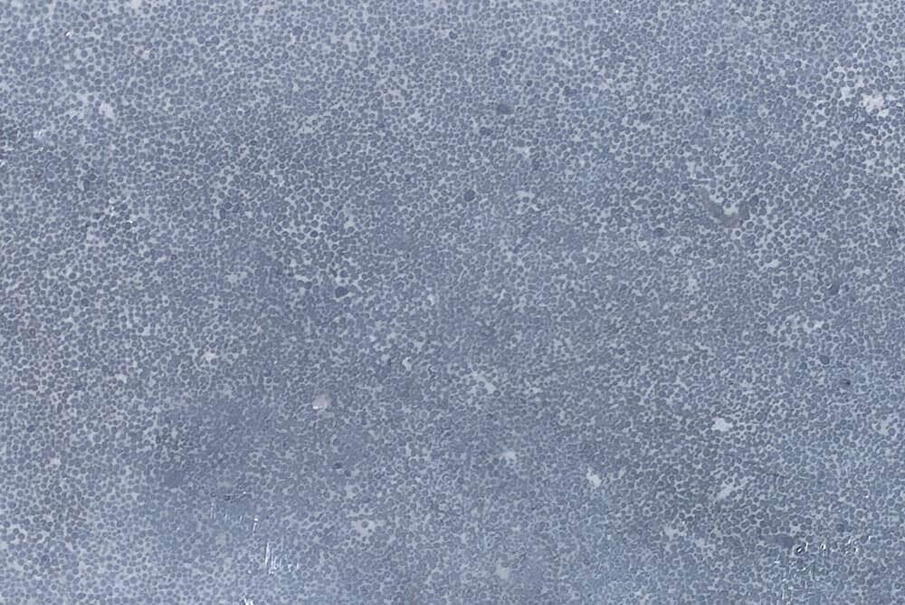Vijverranden - Chinees Hardsteen Vijverrand - Licht gezoet