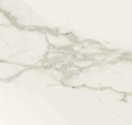 Wandtegels 60x120 - Elite Calacatta - Glossy
