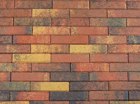 Betonbestrating - Sierbestrating Waalformaat Bont GV