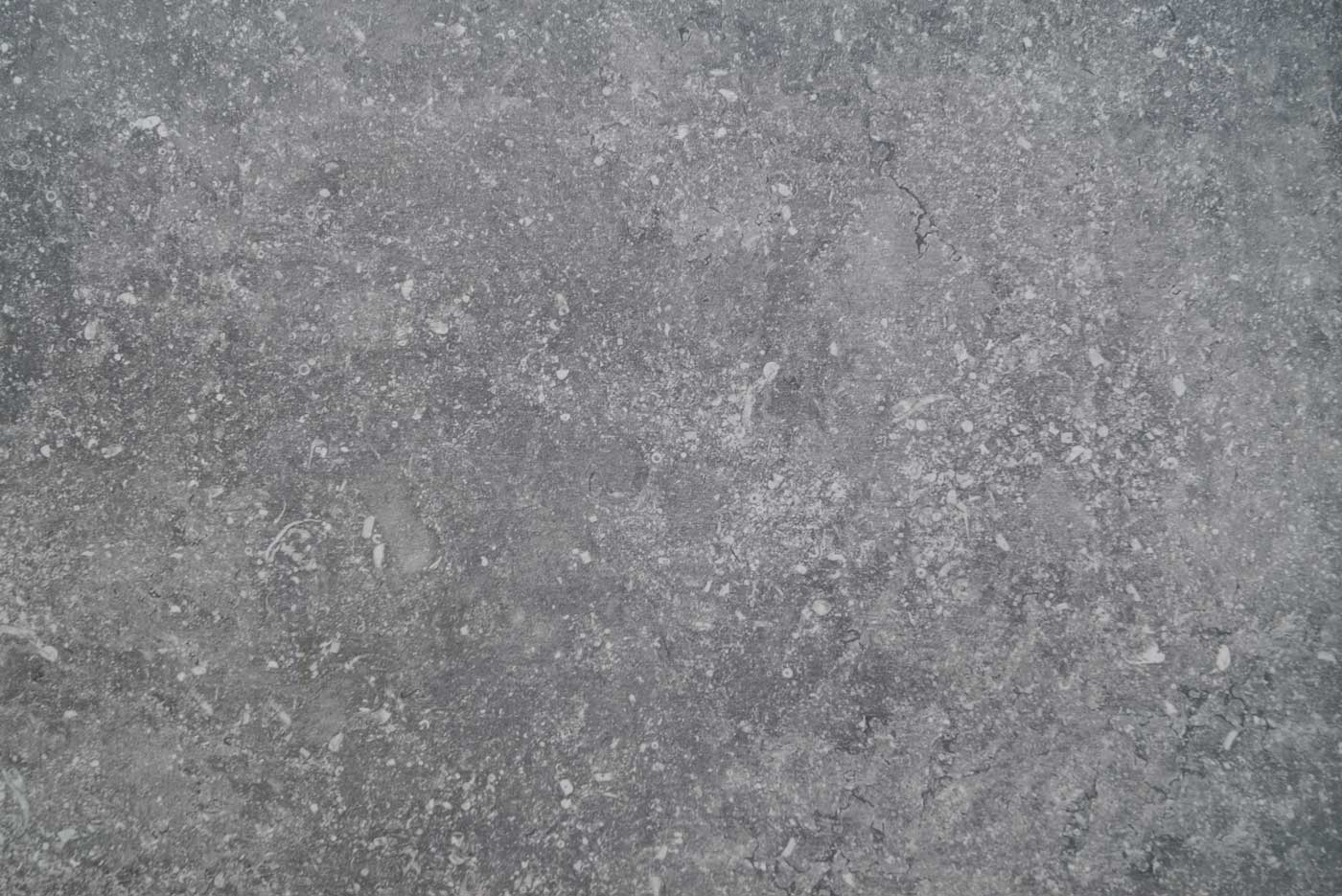 Terrastegel prijstoppers - Belgium Blue Light 2.0